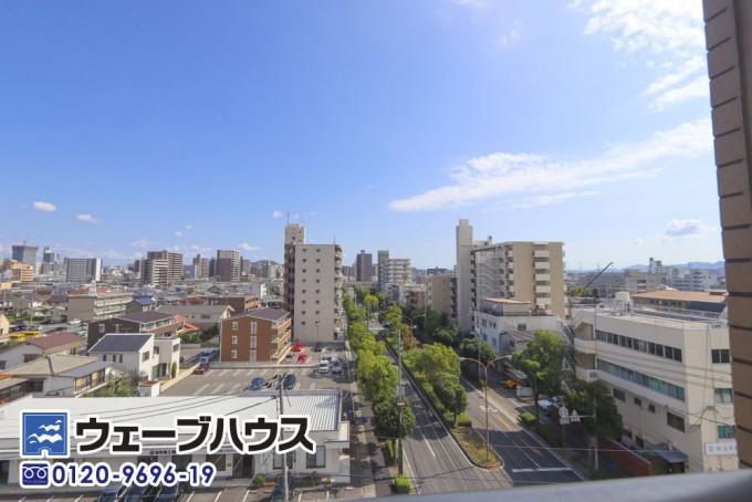 IMG_5459_補正 のコピー